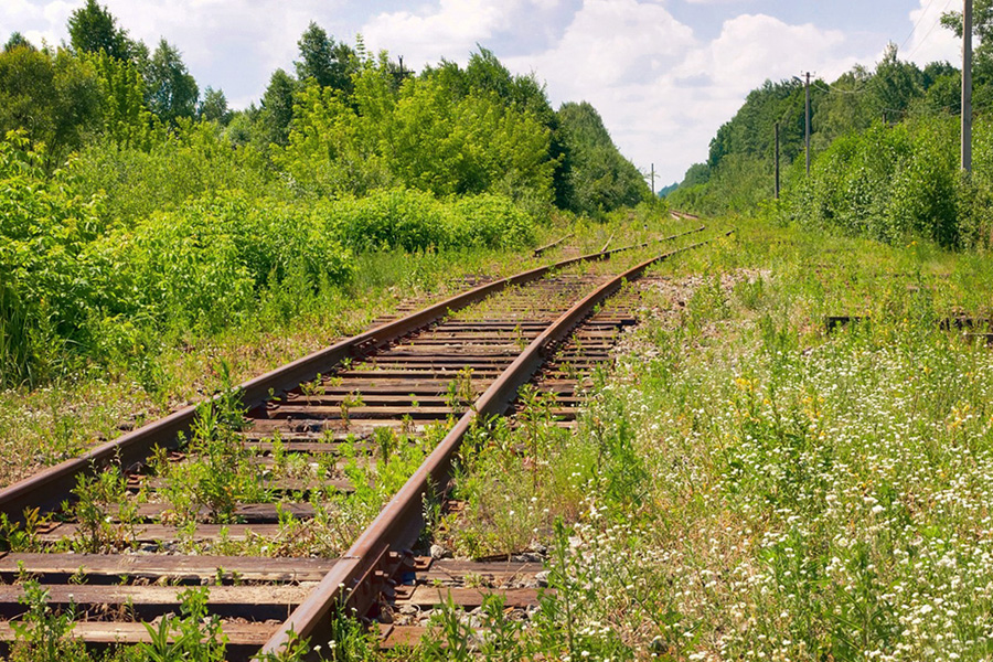The abandoned railroad line through the Chornobyl zone.